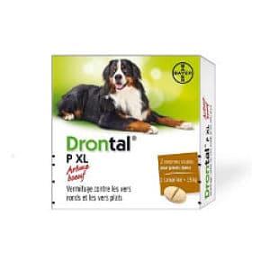 Pastillas Para La Diarrea En Perros