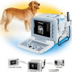 Ultrasonido para perros