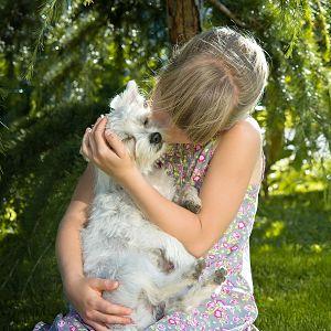 Se pueden pasar las pulgas de perros a humanos
