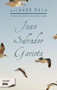 juan-salvador-gaviota