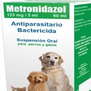 Antibióticos para el parvovirus en perros