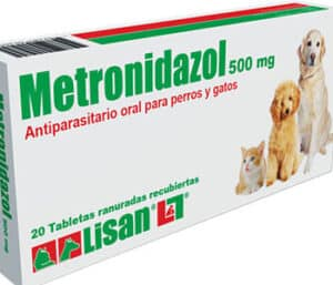 metronidazol como antibióticos para la pancreatitis en perros