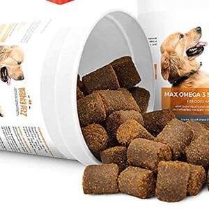 Pastillas para tratar el parvovirus en los perros