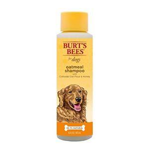 Champú de avena Burt's Bees