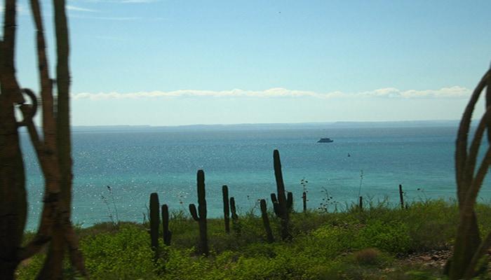 datos curiosos de Baja California Sur