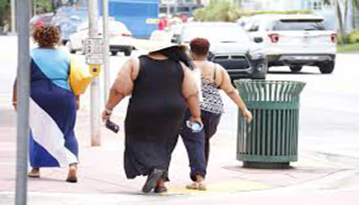 datos curiosos de la obesidad