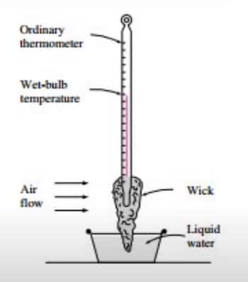 Termómetro de bulbo húmedo