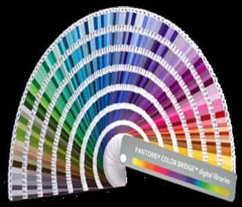 ¿Cómo Saber El Pantone De Un Color?